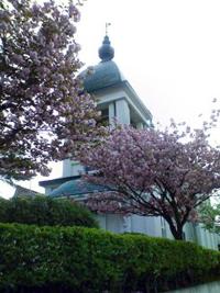 Japon-orthodoxe